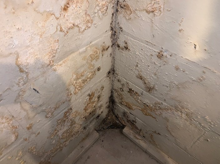 signs of water damage in basement